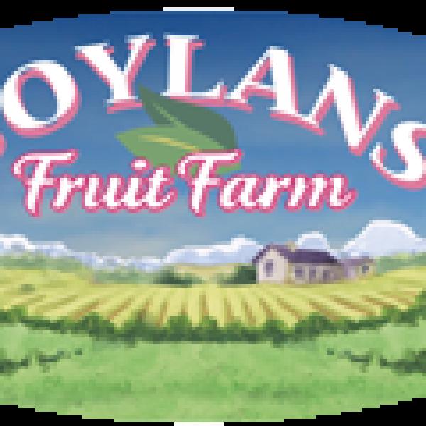 Boylans-Logo